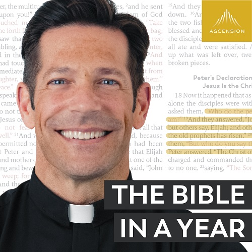 Bible in a Year Podcast - 2