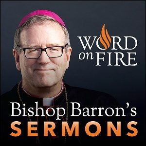 podcast - Bishop Robert Barron's Sermons